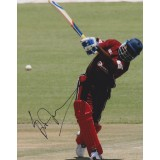 Brian Lara Signed 8x12 West Indies Cricket Photograph