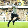 Harry Kane Signed 11x14 Spurs Photograph