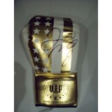 Floyd Mayweather jr Signed VIPBE Boxing Glove From Private Signing