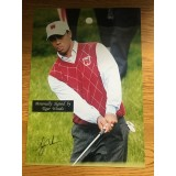 Tiger Woods 17x12 Signed 2010 Ryder Cup  Damaged Photograph